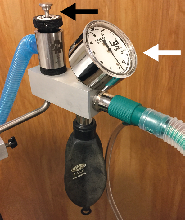 Bain non-rebreathing circuit (NRC) adapter with in-circuit manometer (white arrow) and safety pop-off valve (black arrow).  Courtesy of Heidi Shafford, published in the Journal of Feline Medicine and Surgery, 2018;20:602-34
