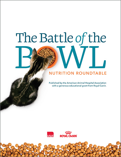 Battle of the Bowl cover