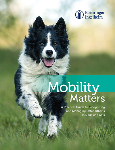 MobilityMatters_cover.jpg